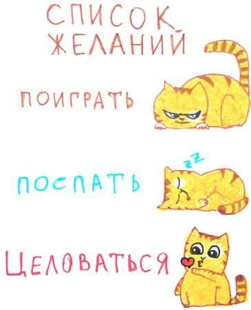 Котячий список желаний. Поиграть, поспасть, целоваться.